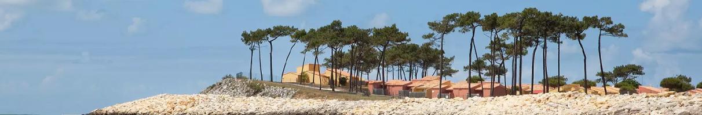 Photo de Club Med La Palmyre