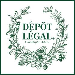 Logo de Dépôt Légal Montparnasse